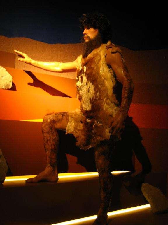 http://img831.imageshack.us/img831/7853/museumsprsident.jpg
