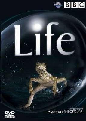 BBC Life (2010) 2 DVD5 Custom Ita